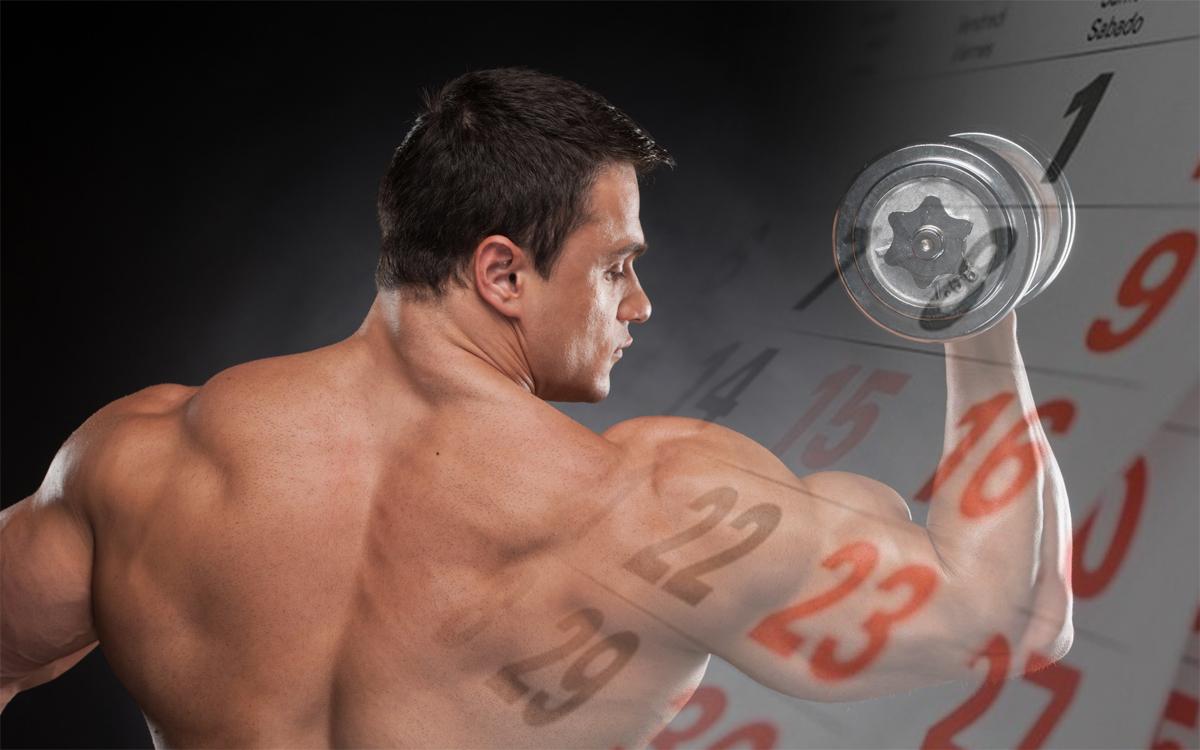 Картинка статьи - Вечный курс стероидов